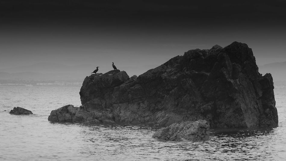 Animal Themes Animal Wildlife Animals In The Wild Beauty In Nature Bird Cormorant  Day Hiking Horizon Over Water Nature No People One Animal Outdoors Perching Rock - Object Rock Formation Scenics Sea Silhouette Sky Tranquil Scene Tranquility Water Waterfront