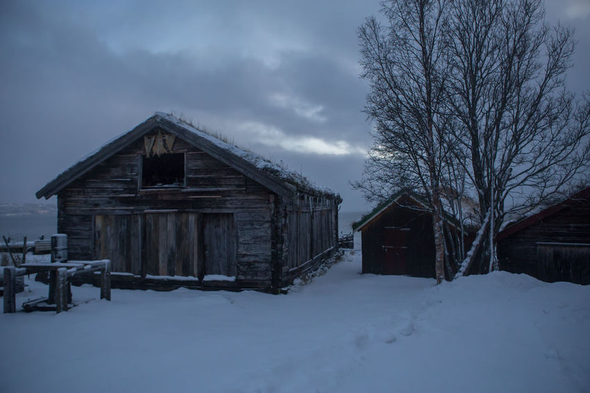Old boathouses at Stakken Architecture Beauty In Nature Boathouses Building Exterior Built Structure Cold Temperature Day Environment Extreme Weather Frozen House Landscape Nature No People Outdoors Sky Snow Snowing Storm Tree Weather Winter Wood - Material