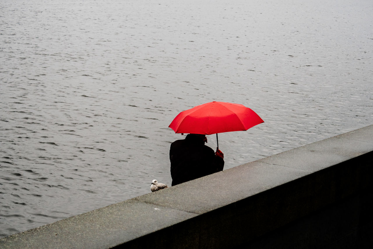 Rainy Days in Hamburg Adult Adults Only Alster alster hamburg day one man only one person only men outdoors people Rain Rainy Days Red seagull street streetphotography umbrella water