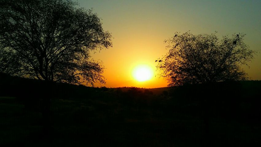 India Sunset Adventures Ranthambore Discovering The World