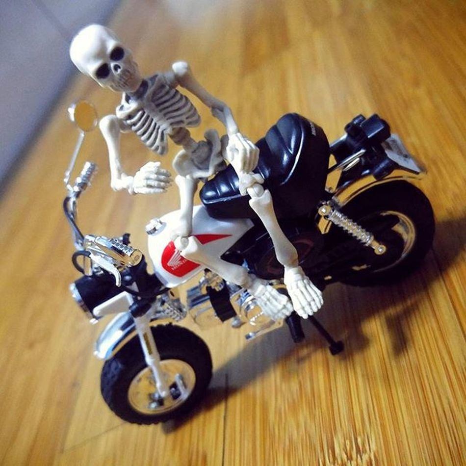 Just chillin... Motorcycle Figure Toys Skeleton Rement Poseskeleton Honda Monkey Hondamonkey Hondaz50 Val  2016 LGG4 LG  G4 😚 😚 ☠
