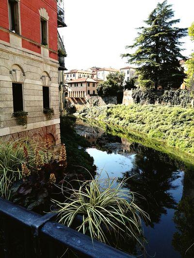 Wonderful. 🌿🍃☀️ Water Reflection Day Nature Plant City Sky IloveIT ♡ Vangogh Travel Photography October Fall🍁 Italy🇮🇹 Veneto Tbt💕 Landscape Beautiful Nature Vicenza, Italy