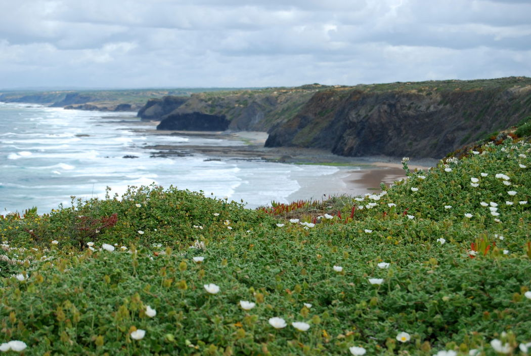 Coastline Coast EyeEm Nature Lover Scenery Scenic Portugal Landscape Landscape_Collection Landscape_photography