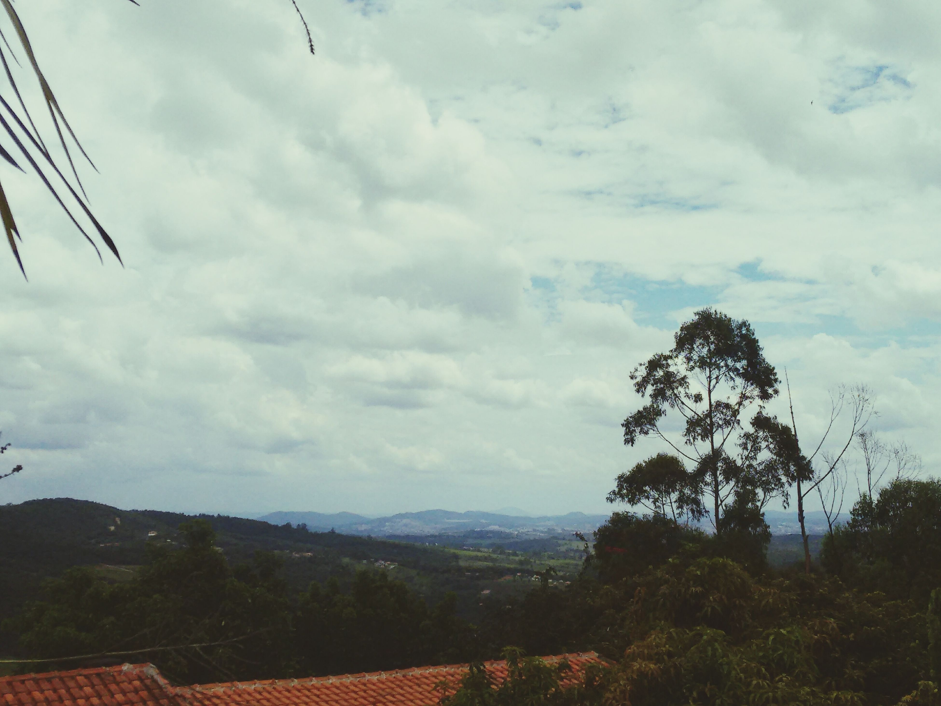 sky, cloud - sky, tree, cloudy, cloud, landscape, tranquil scene, tranquility, mountain, scenics, nature, beauty in nature, built structure, day, growth, overcast, low angle view, outdoors, building exterior, hill