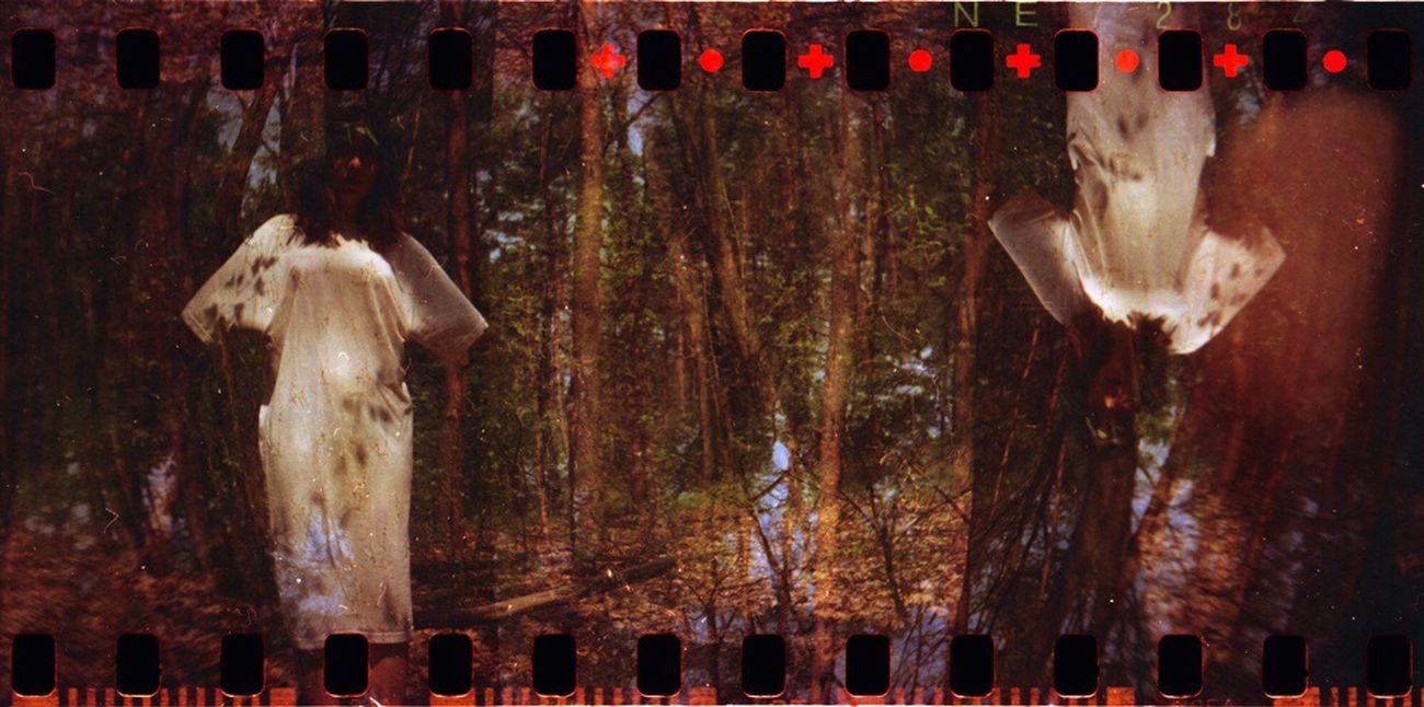 Kicsigaboka Sprocket Rocket Panorama Forrest Lomography Film Photography