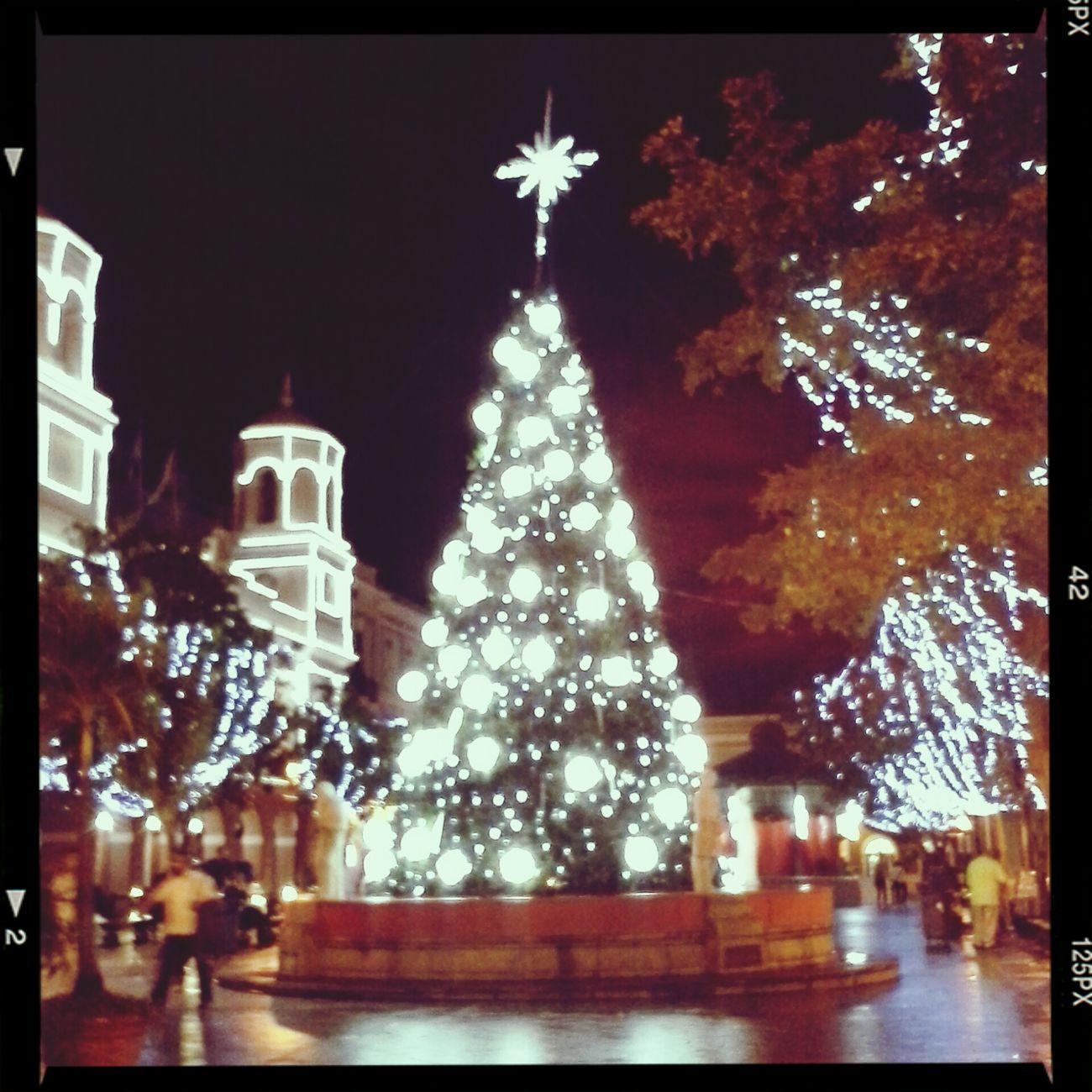 Christmas♥ Oldsanjuan Navidadboricua ChristmastreeLoveit
