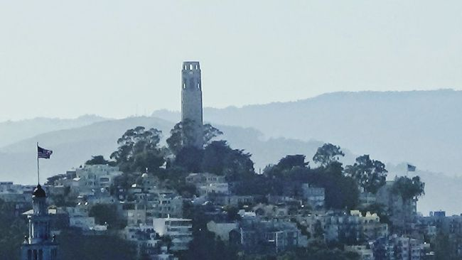 Coit Tower San Francisco Bay Living Northern California Bay Area Ufo'sRoxannReyes75.com Bay Bridge The City