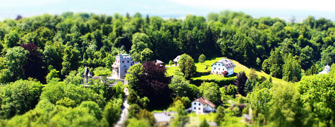 Alps Architecture Beauty In Nature Building Exterior Built Structure Countryside Day Green Green Color Growth Hill Historical Historical Building House Nature No People Outdoors Panorama Salzburg Sky Summer Sunny Tilt-shift Tower Tree