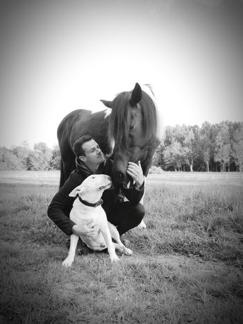 My life, my boys 💖 Domestic Animals Dog Pets Animal Animal Themes Happiness Bullterrier Horse Photography