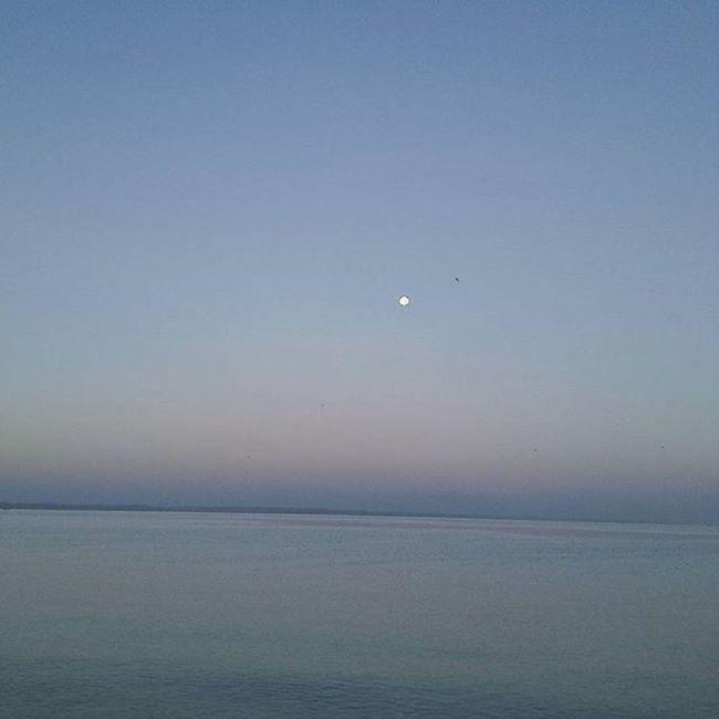 Moonlight, too bright for our eye's sight VSCO Vscocam VSCOPH Vscophilippines Vscophile Vscorussia Vscomoscow GrammerPH Instapic Wanderlust Wander Wanderlusting