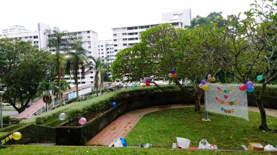 Happy Birthday Party Venue Tree Outdoors City Day Grass Plant Nature