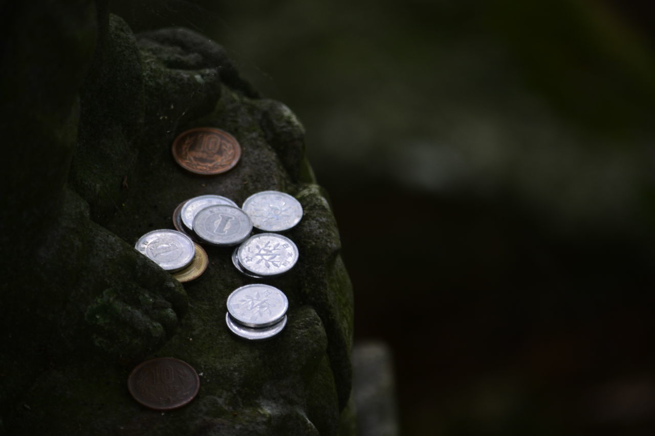 Beautiful stock photos of money, Coin, Cultures, Day, No People