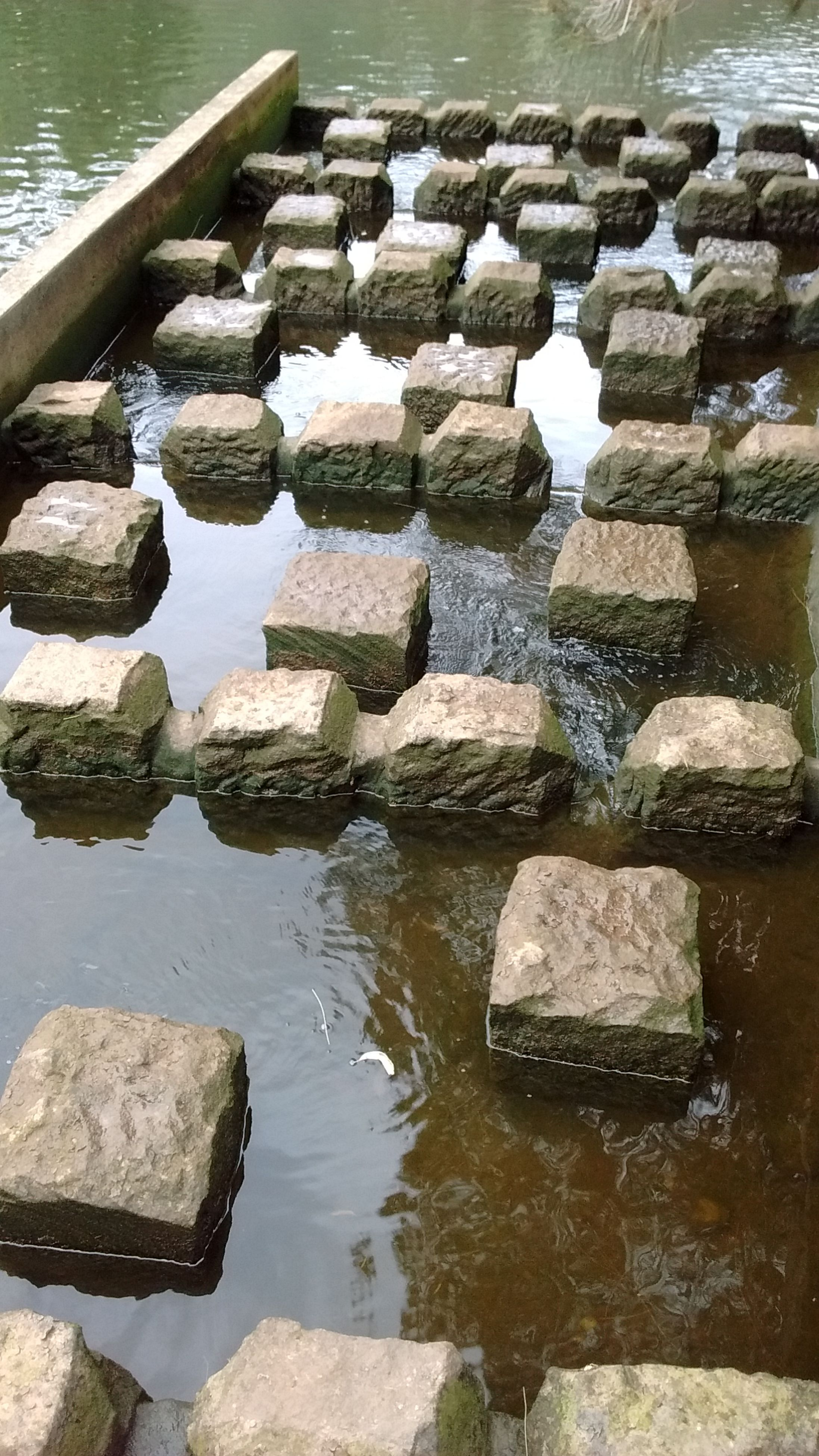 water, reflection, nature, stepping stone, day, outdoors, no people, beauty in nature