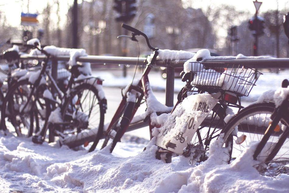 Rent A Bike Snow Time in Berlin SVART & VIT