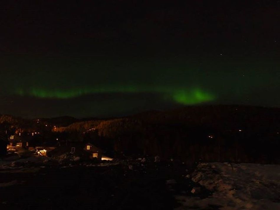 👽💚👽💚weLcomE baCk LadY AURORA➡YOu maDe My eVeniNg👽💚👽💚 Auroraborealis NorthernLights Nordlys Aurorahunting Greensky Skylovers Kongsberg Buskerud Sheisback Damgooddays Maxjoy Ilovenorway Loves_scandinavia Loves_norway Loves_nature Amazingnature Ic_skies Dreamchasersnorway Highlightsnorway Mittnorge Norsknatur Mylifemyadventure Nevergiveup Lifeisgood Skyporn welcomeback wu_norway ig_northernlights fromwhereistand