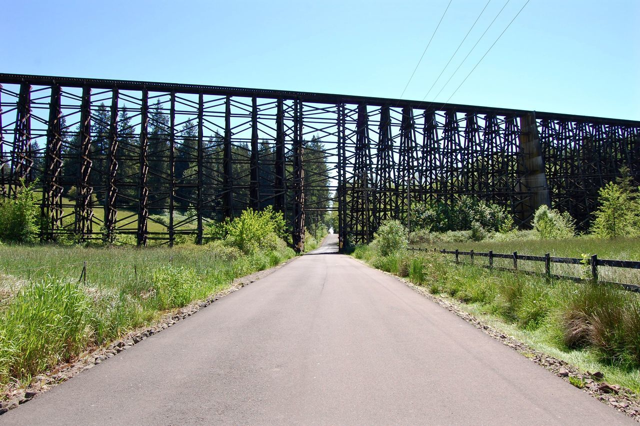 the way forward, diminishing perspective, vanishing point, connection, road, bridge - man made structure, transportation, tree, no people, day, clear sky, nature, outdoors, built structure, growth, bridge, plant, scenics, landscape, architecture, sky