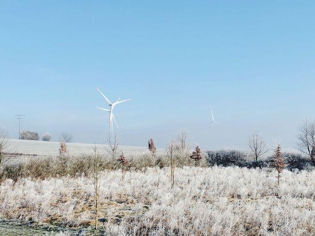 kalt Hameln Power Power In Nature Regenerative Power Windmühle Alternative Energy Kalt Wetter