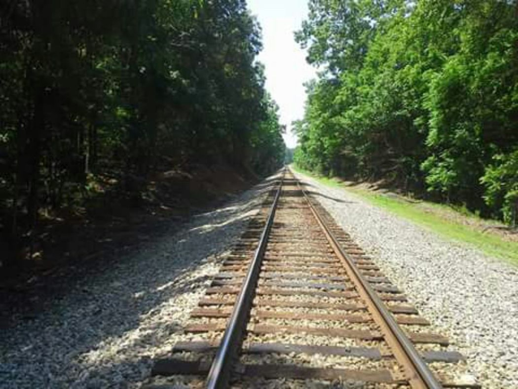 Railroad Tracks Trains Landscapes Perspectives David Tupponce Tupponce Photography Gretna Virginia Usa Trees And Rocks Shadows And Light Creative Light And Shadow