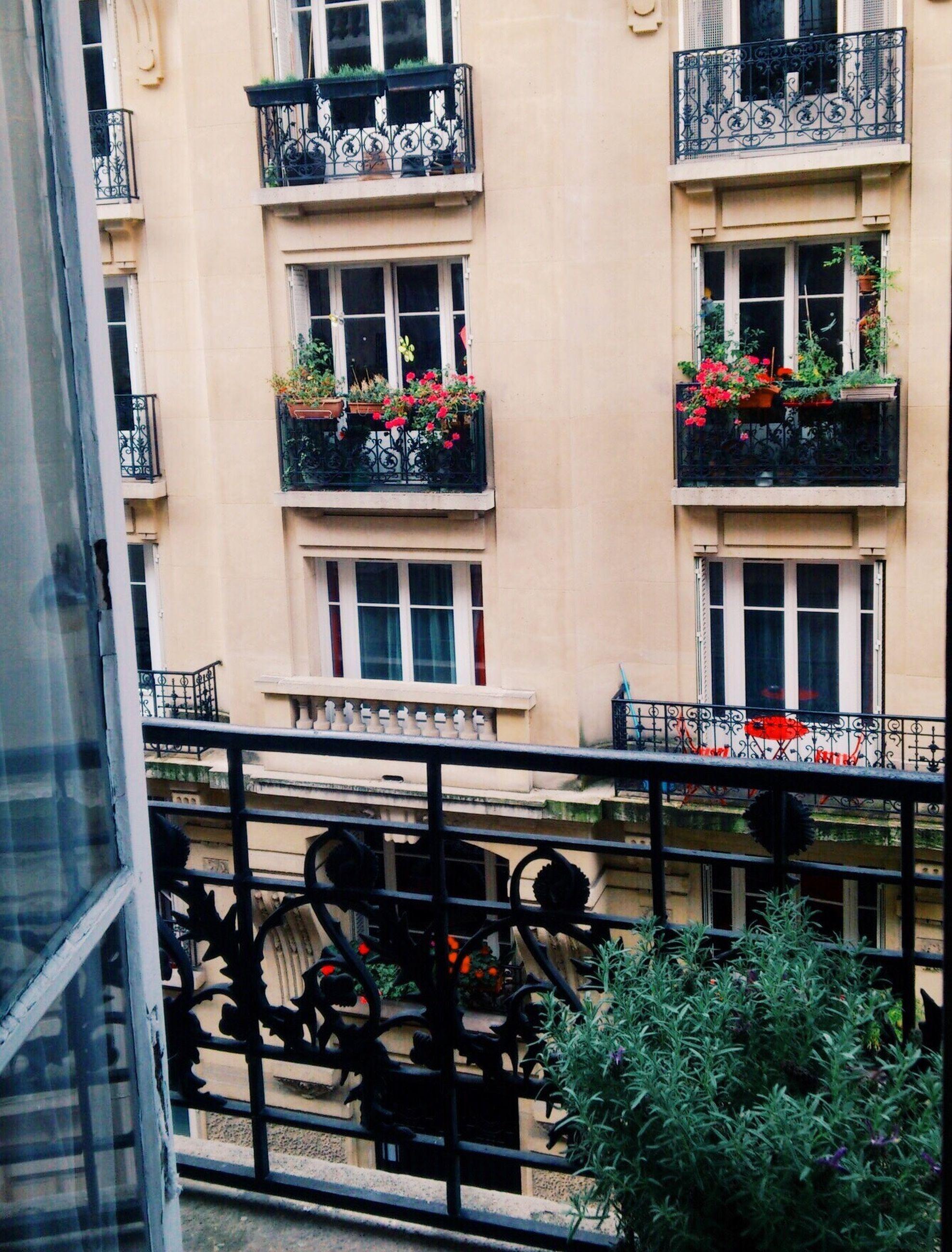 France Morning Paris Good Morning