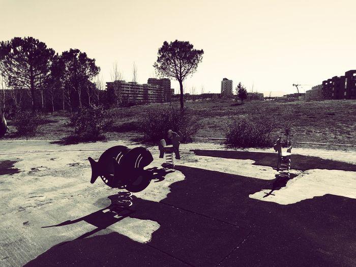 Parco Delle Sabine Roma Shadow Blackandwhite First Eyeem Photo
