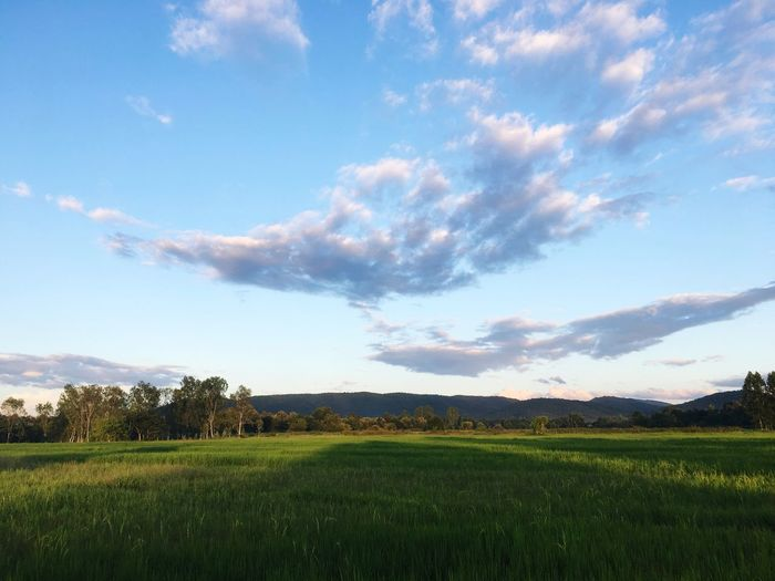 ❤️ Nature Sky Field First Eyeem Photo