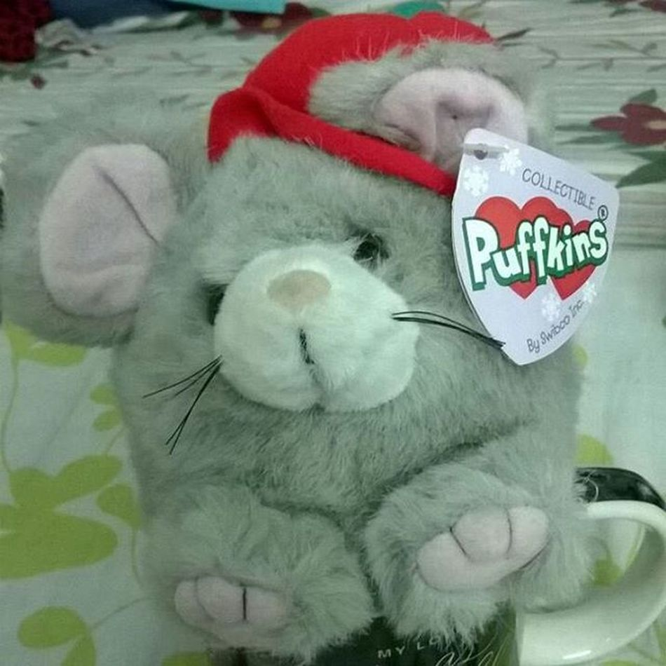 Soft_toy 😋😘 Love_care_and_affection 😍 Love_like_you_do💞 Pic_of_the_day 👌👌