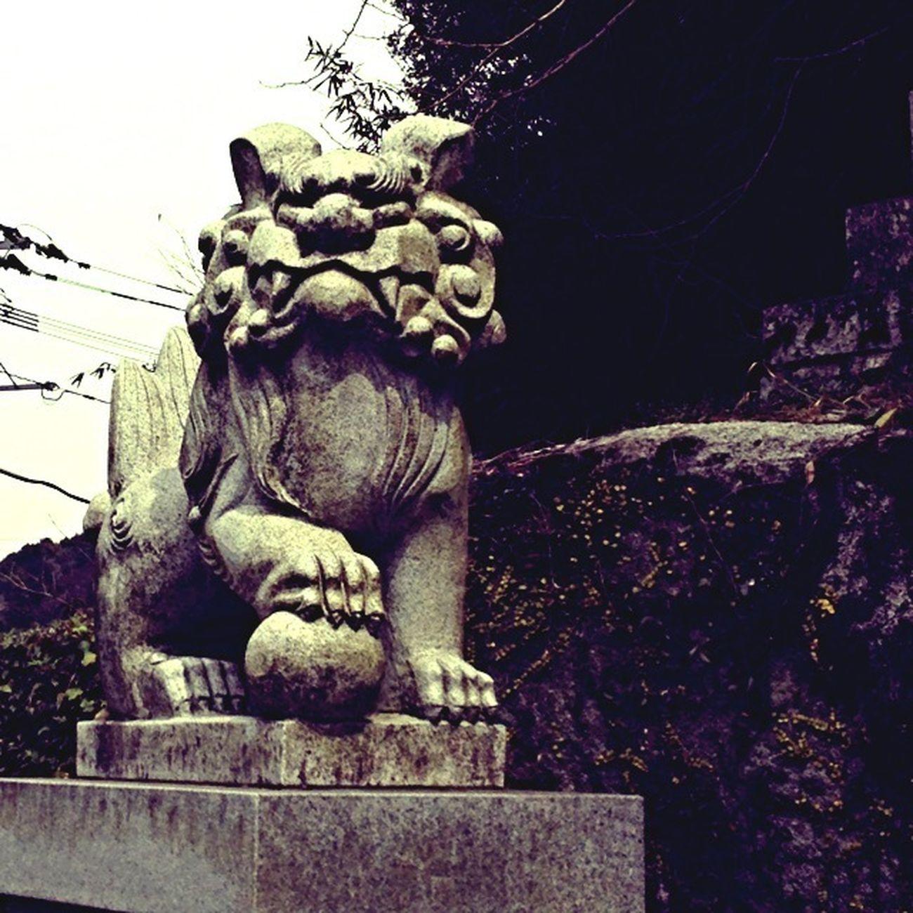 神社 狛犬 お寺or神社 TENPLES