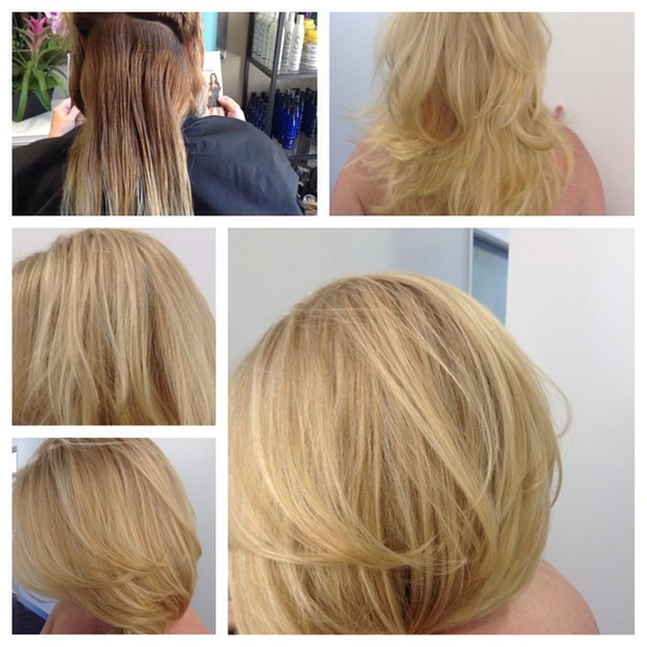 One of my Beautyblogger friends Bblogger Blondehairdontcare CorrectiveColor picstitch