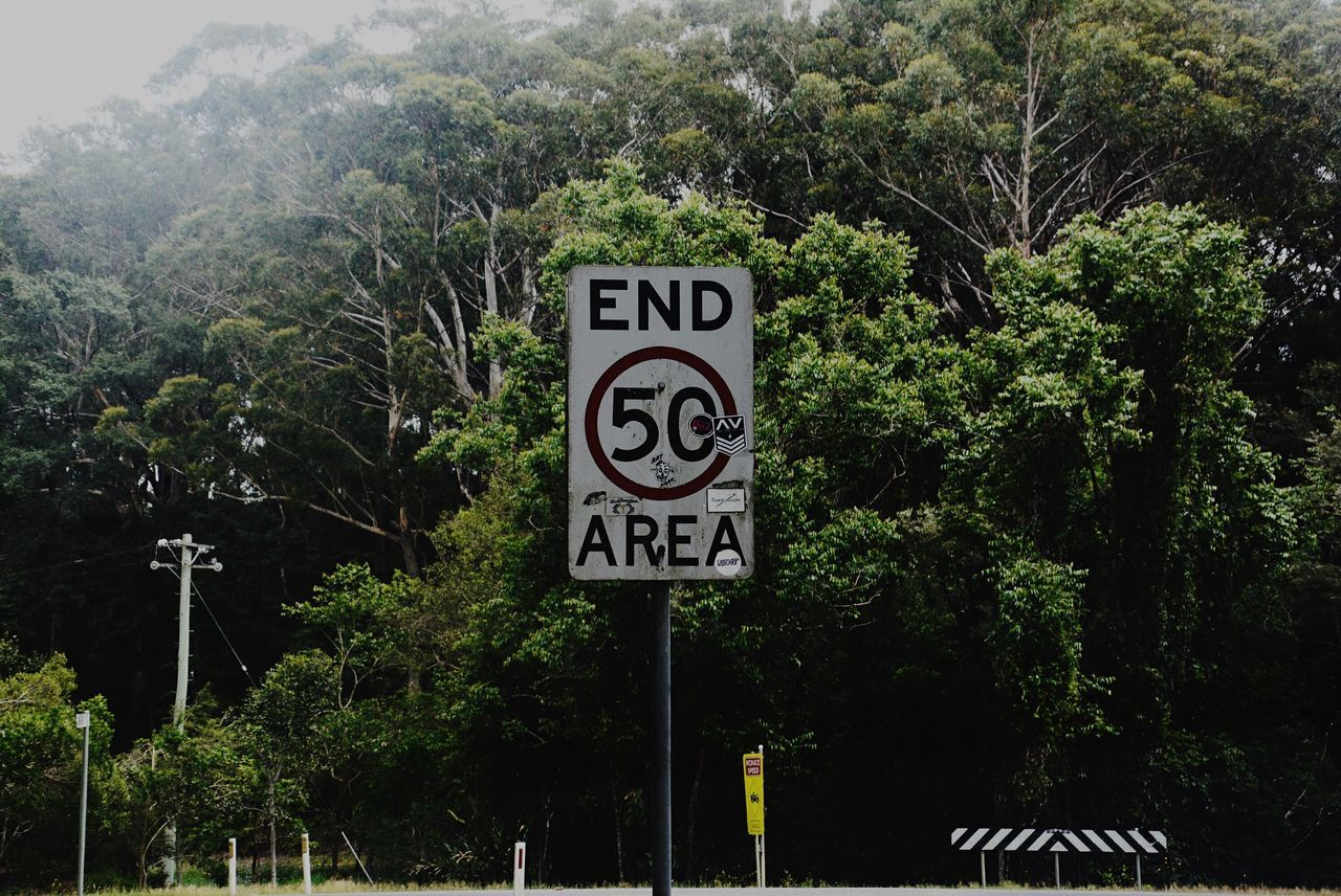 Tree Communication Text Nature Speed Limit Sign Information Sign Guidance No People Outdoors Day Road Sign Growth Beauty In Nature Sky Close-up Rain Forest