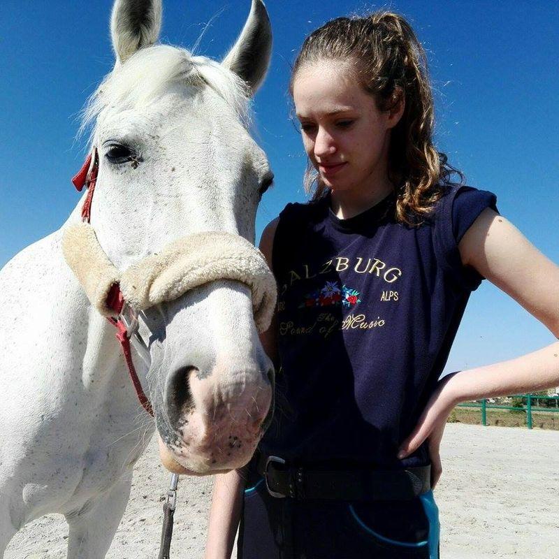 Cavallo Cheval Horse Ippica Marta