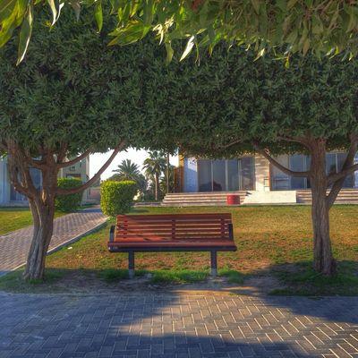 Photo by Altaf AlAli
