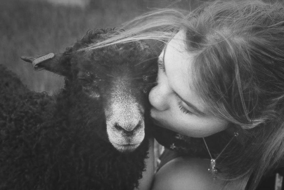 Love Cozy Kisses Beautiful