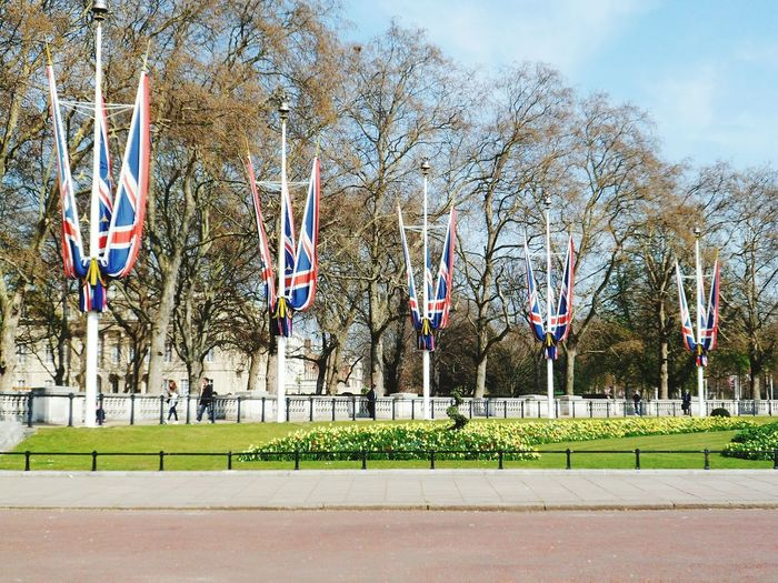 Buckingham Palace end of The Mall looking glorious draped in the Union Jack London Historical Sights Buckingham Palace International Landmark Capital Cities  Travel Capital City Outdoors Travel Destinations Famous Place Incidental People Trees Flag