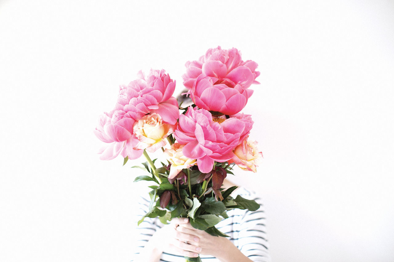 My favourite flower of all time. Peonie Pink Peonies Flowers Flowerporn Hanging Out Gift Sydney
