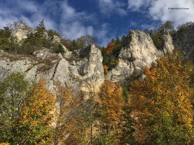 Europe Landscape Colors Forest Sunlight Mountain Autumn Travel Destinations Aboutgabriella Photography No People Sky Outdoors Majestic Beauty In Nature Nature Traveling Adventure Wanderlust