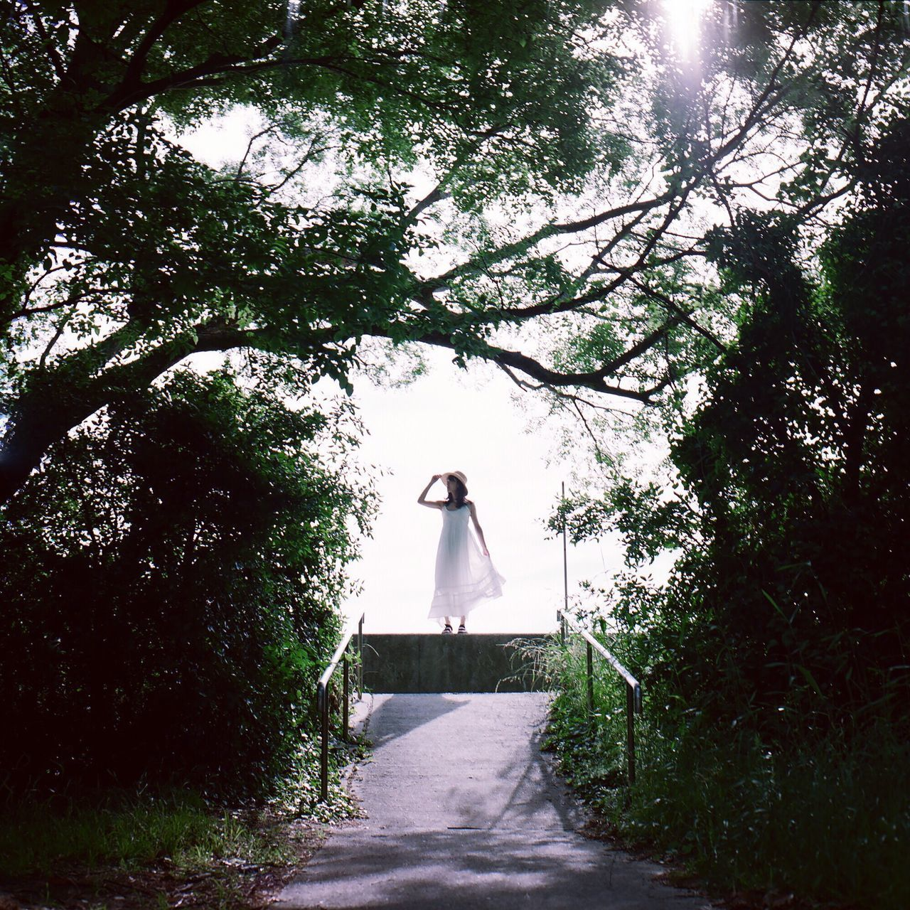 People Haraism Japan Film Enjoying Life Getting Inspired Portrait Light And Shadow