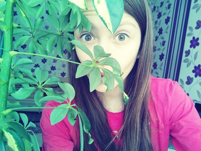 когда скучно цветы🌸🌼🌻💐🌾🌿 мррр 💙❤ Plant My Friend Plants Are Friends