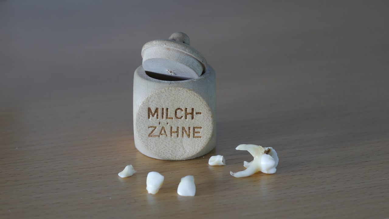 Milk tooth- memory of childhood Studio Shot No People Communication Close-up Indoors  EyeEm Gallery Eyem Gallery Memory Lasting Remembrance Milk Tooth Childhood Wooden Box Milchzähne Milchzahnbox Herausgefallen Still Life