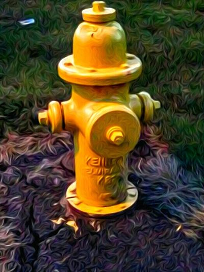 Firehydrant Fire Hydrant Dog Bathroom Yellow Color Taking Photos Check This Out Hanging Out Eyeemphoto Color Palette Createyourhype Color Explosion Its What You Make It Real Light Portrait Reallifephotography Water Spouts Corner Decor Shits And Giggles