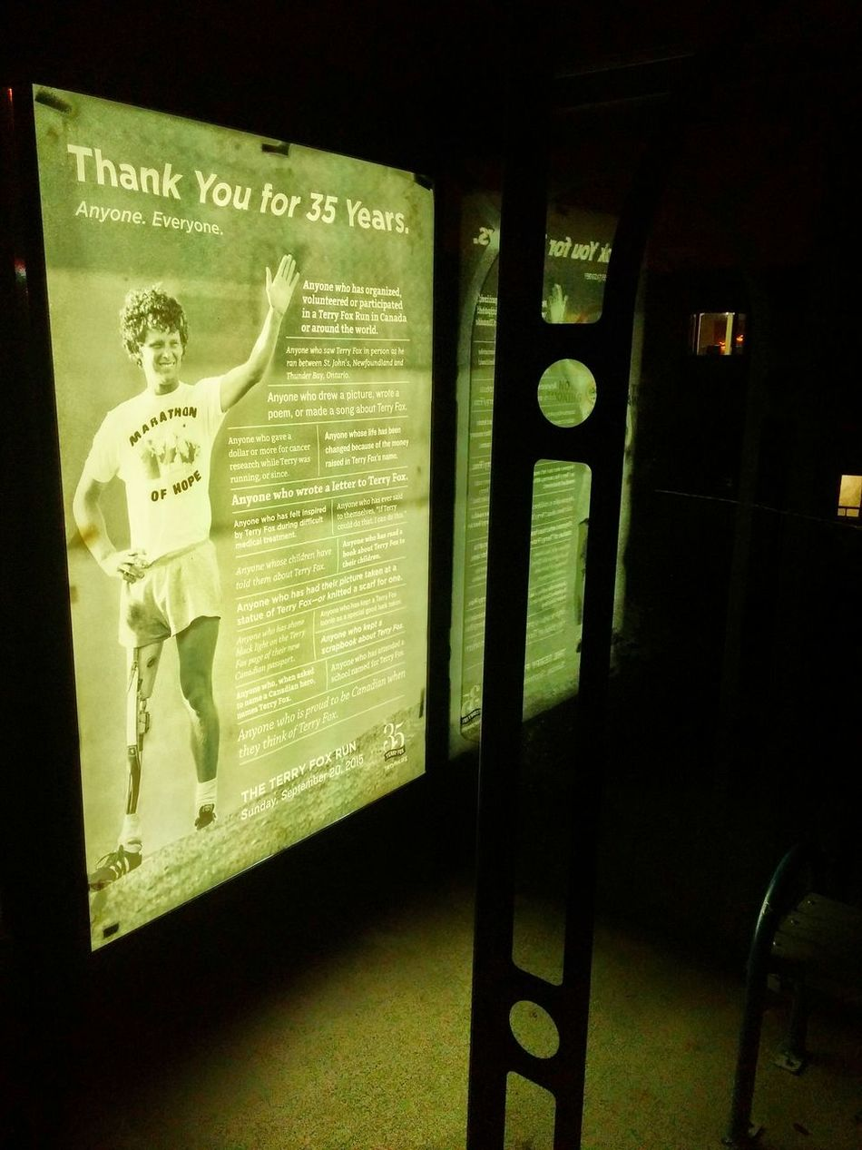 Terry Fox Cancer Help After Dark Bus Stop Night Walking Around The City  Humanity At It's Finest City Photography Peace And Quiet St. Johns  Hope Unity Canada Shadow Beauty Around Us Reflection The Street Photographer - 2016 EyeEm Awards