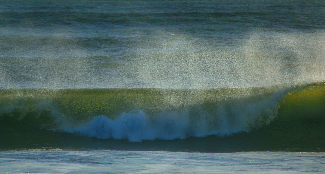 Ocean waves race, curl, and crash against the beach sending golden droplets of sea spray everywhere. Aqua Beach Crash Curl Droplets Energy Force Motion Nature Ocean Pipeline Power In Nature Powerful Sea Seagreen Seascape Seashore Spray Surf Surfing Travel Water Waterfront Wave Zen