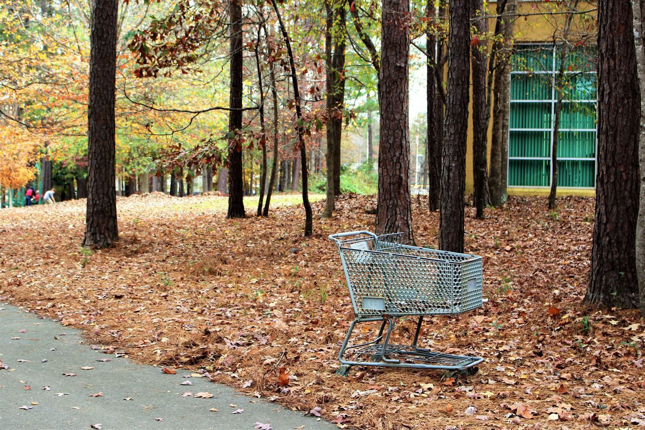 Shopping Cart By Trees At Park During Autumn