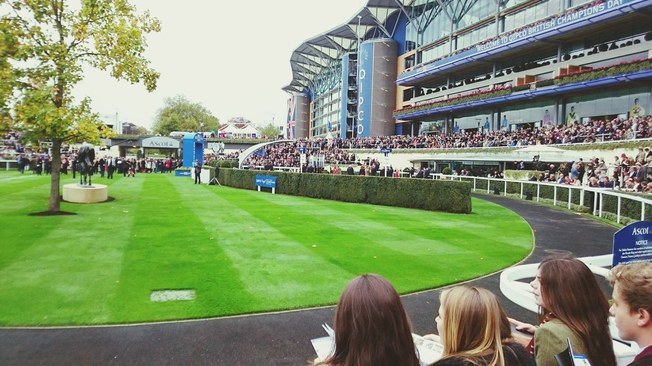 Ascot Crowd People Stadium Sport Sports Venue Sports Event  Outdoors Racing Horse Racing Ascot Racecourse Ascot