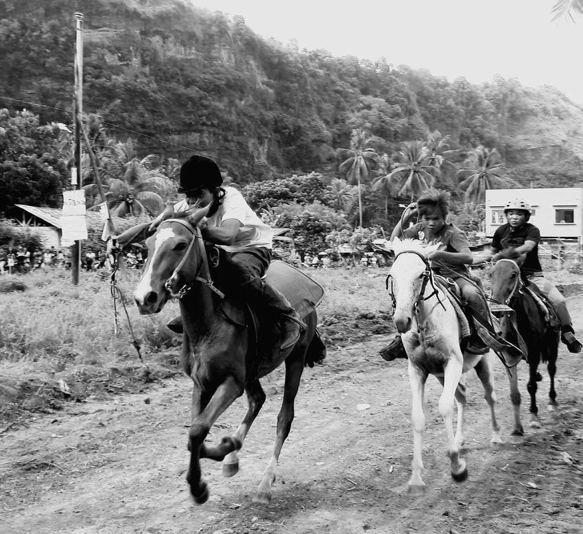 For the prize... Race Horserace Horseback Horsebackriding  Barrio Barriolife