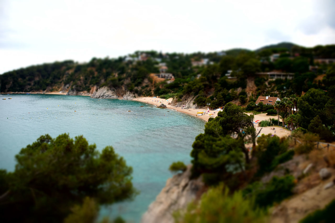 Beach Beauty In Nature Day Nature No People Outdoors Scenics Sea Sky Tilt Shift Tilt-shift Tree Water