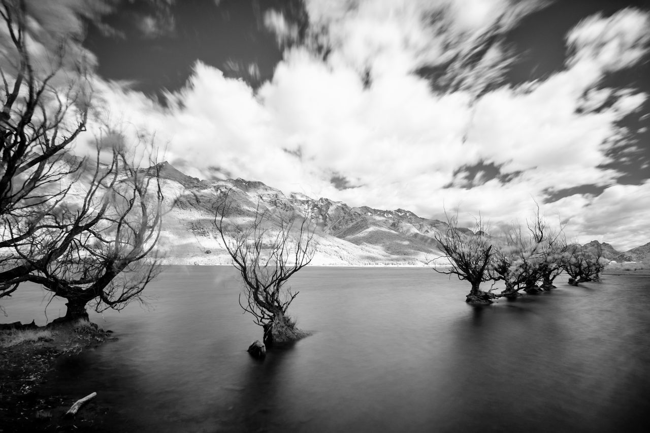 Bare Tree Beauty In Nature Black & White Black And White Dark Day Infrared Photography Landscape Melancolic Mountain Nature No People Outdoors Scenics Sea Sky Tranquil Scene Tranquility Tree Water Waterfront Neighborhood Map Glenorchy, NZ Glenorchy Travel Destinations