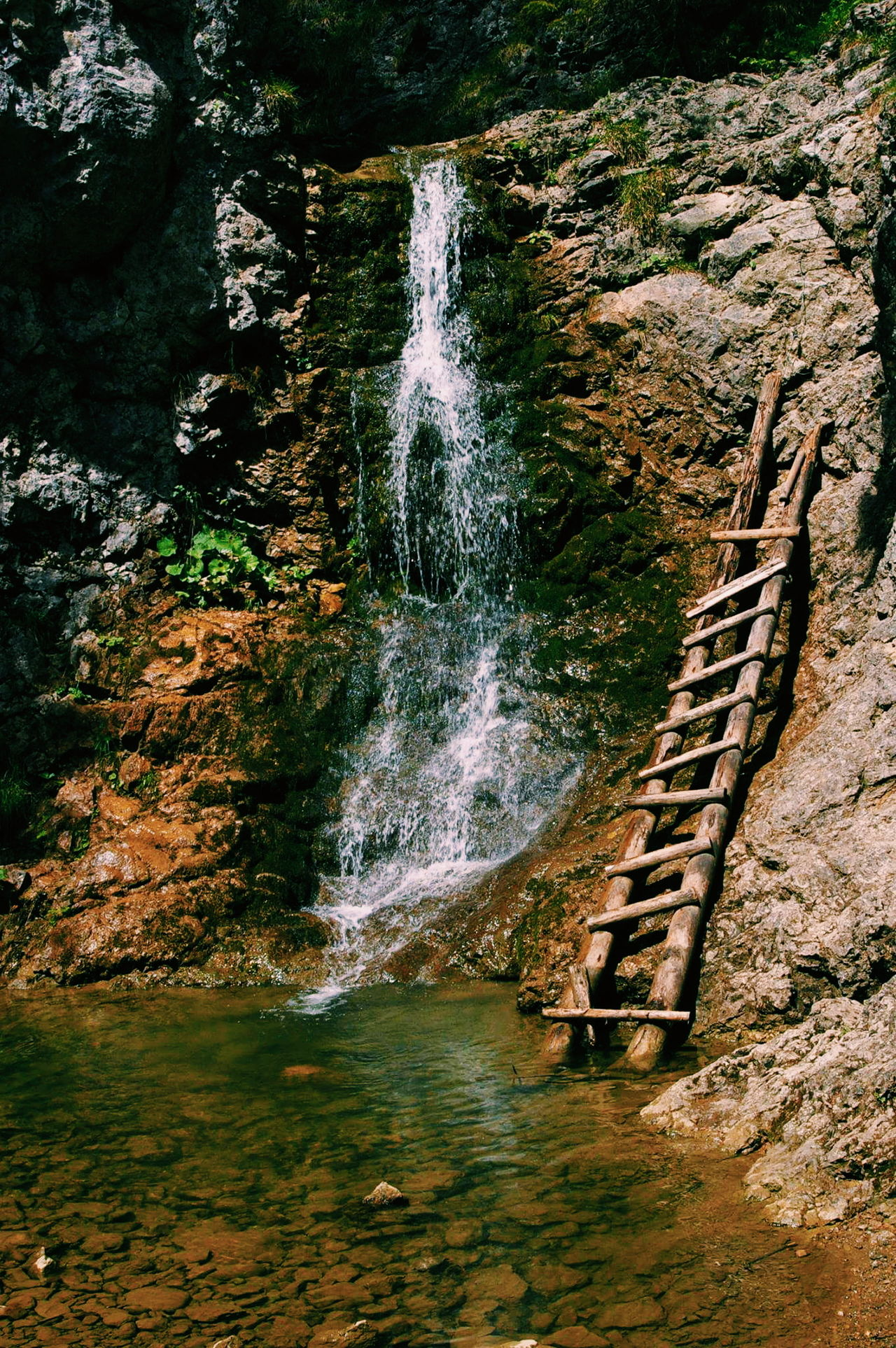 With it, I can dream boldly, with him every pitfall handle. He who gives me wings, trumps all governments. Wooden Ladder Beauty In Nature Clear Water Happy Trip :) My Day Sunny Day☀ Waterfall