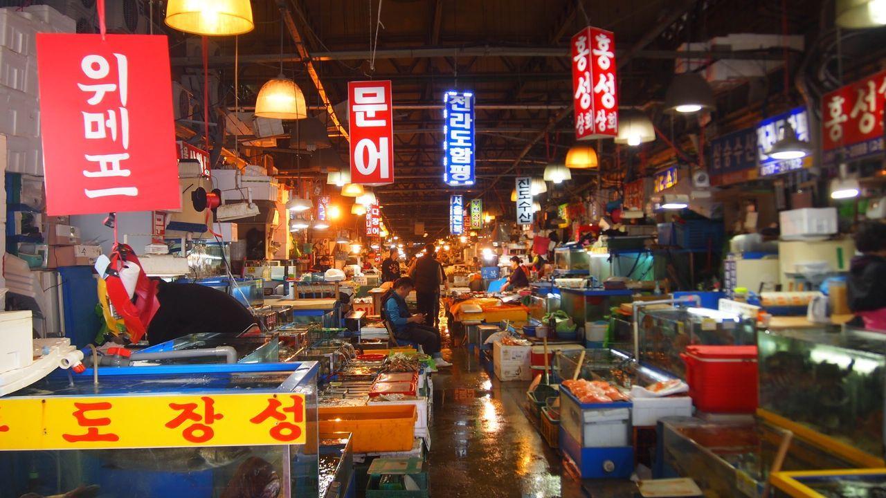Fish Fish Market Fisherstown Food Korea Korean Food One Man Only Outfocus Raw Fish Sashimi  Sashimi Dish 노량진