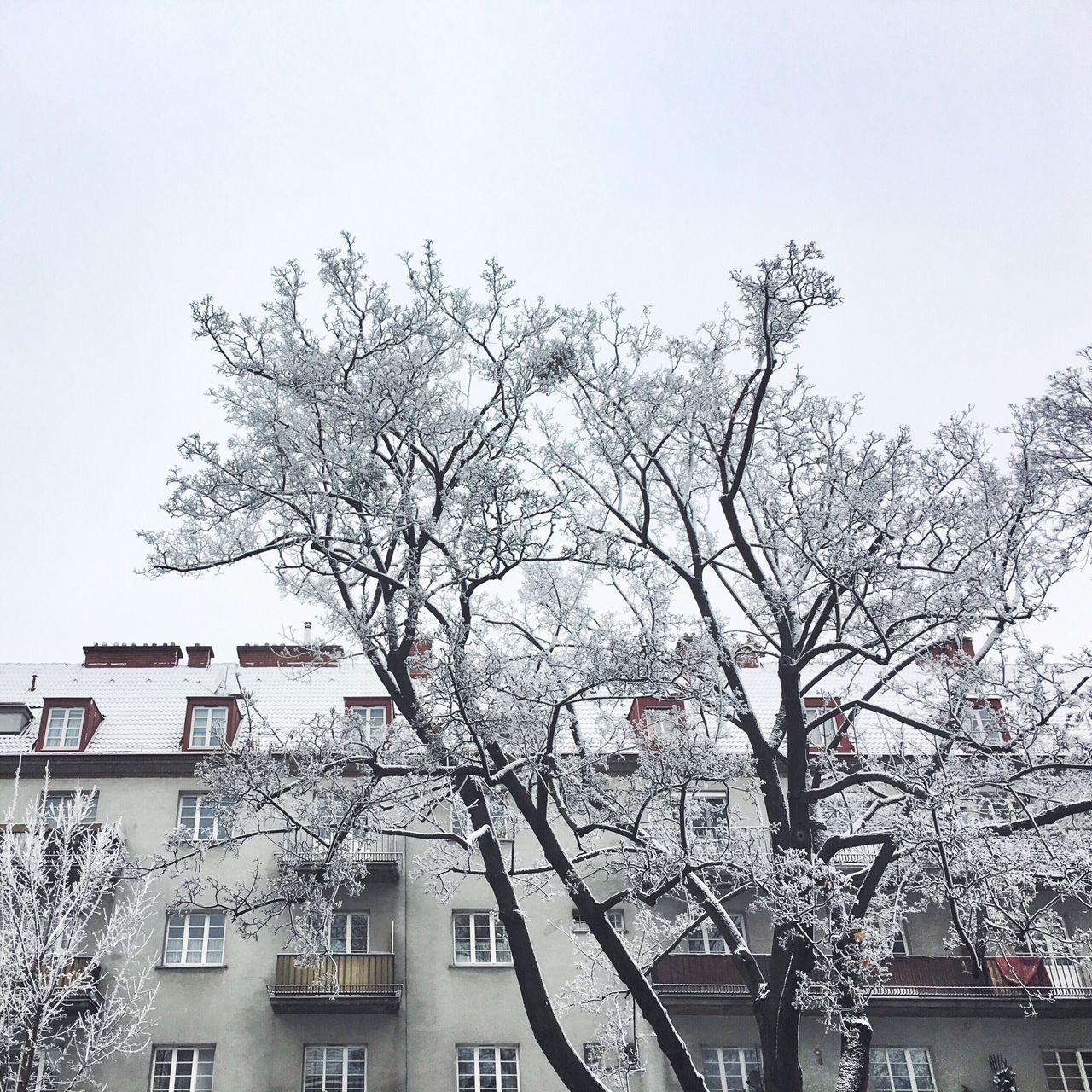 Snow In Vienna White City Snow On Trees