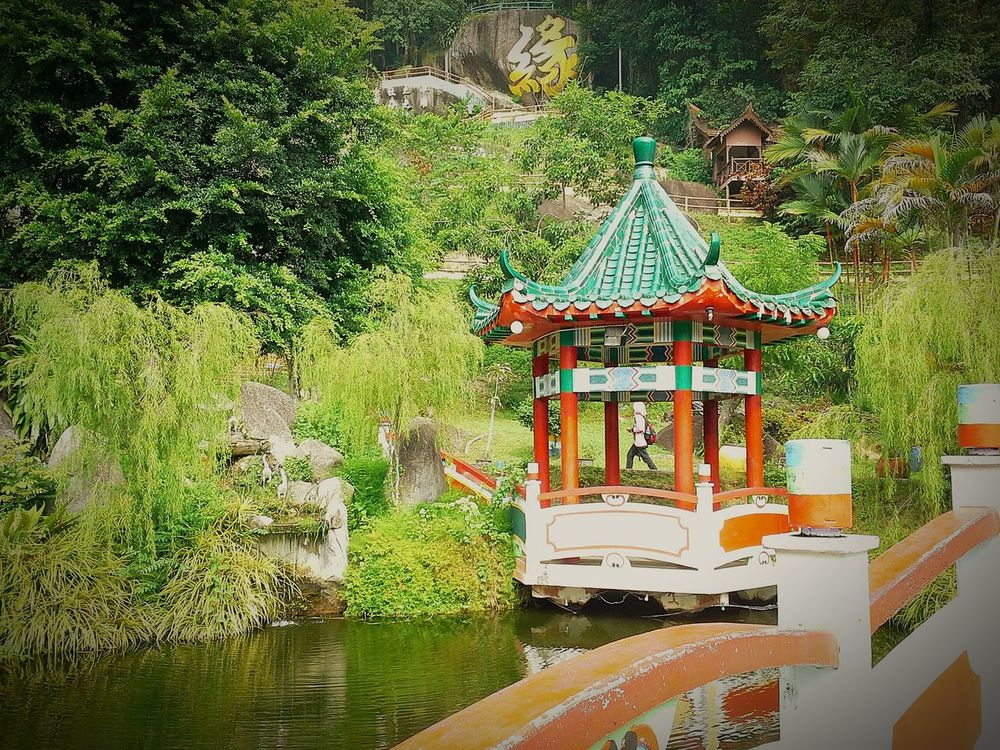 Taking Photos Koi Pond at FuLinKong Temple Pangkor Island Jalanjalanperak 2015Trip Nature Photography By Ismi_zuehaira